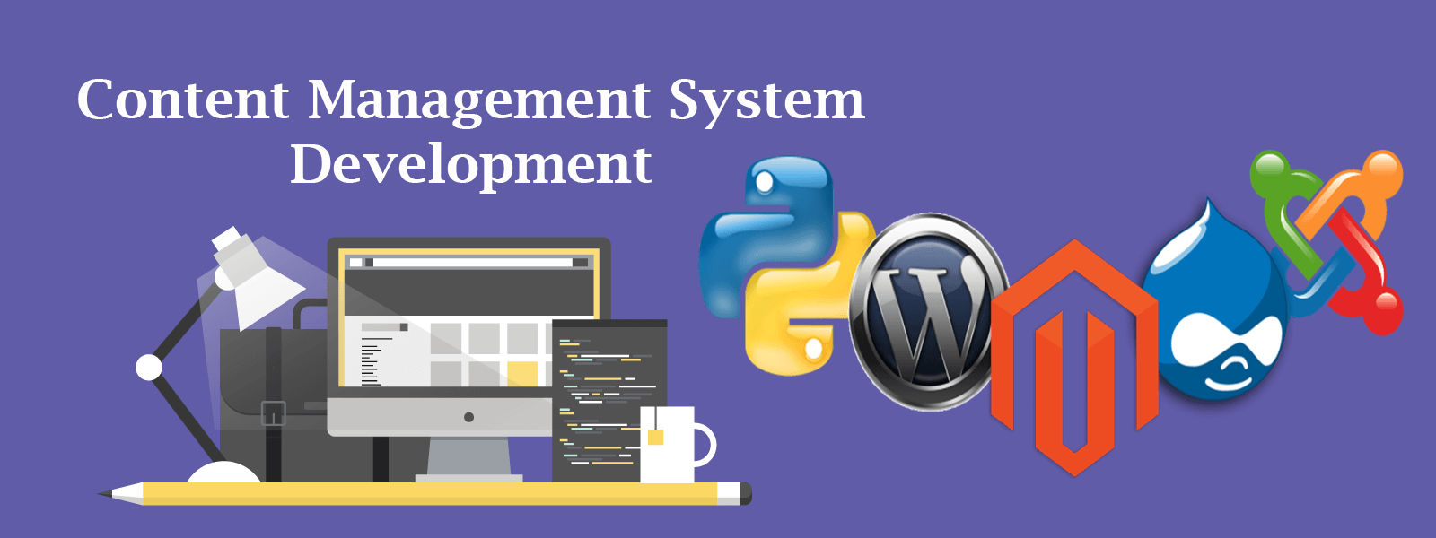CMS Web Development Chicago